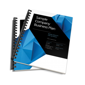 pitch plan business plan - Business Documents