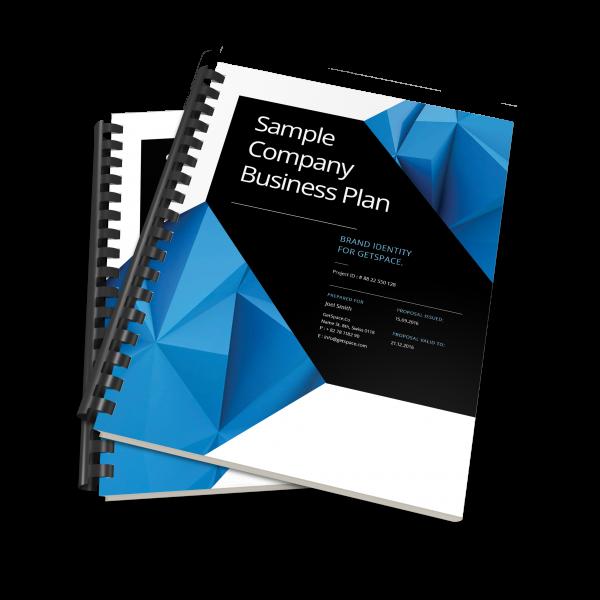 pitch plan business plan